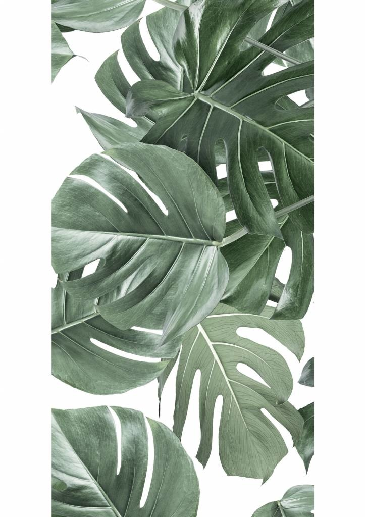 Behang 2 strook Botanical Monstera 97.4x280cm-3