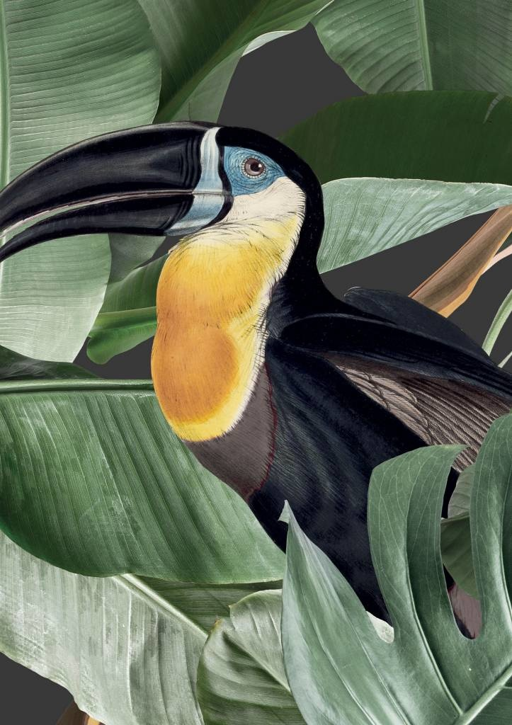 Behang 2 strook Botanical Birds 97.4x280cm-4