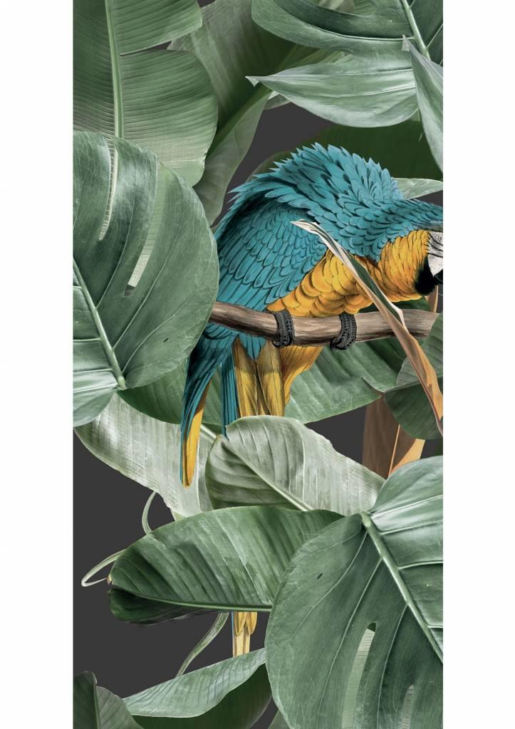 Behang 2 strook Botanical Birds 97.4x280cm-1