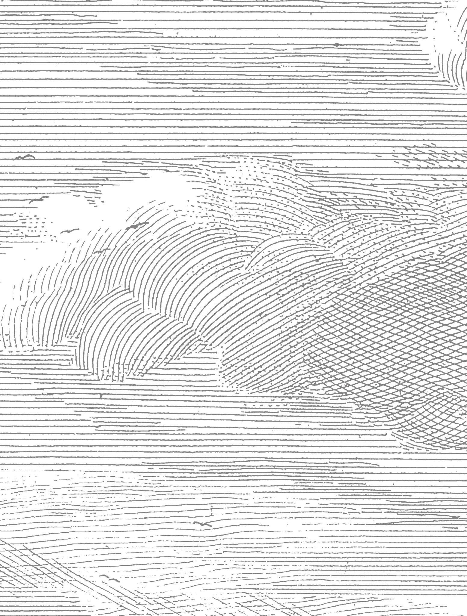 Behang Engraved Clouds 389.6x280cm-3
