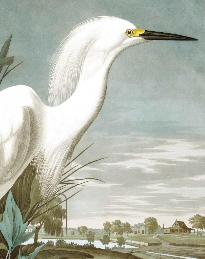 Behang Snowy Heron 142.5x180cm-4