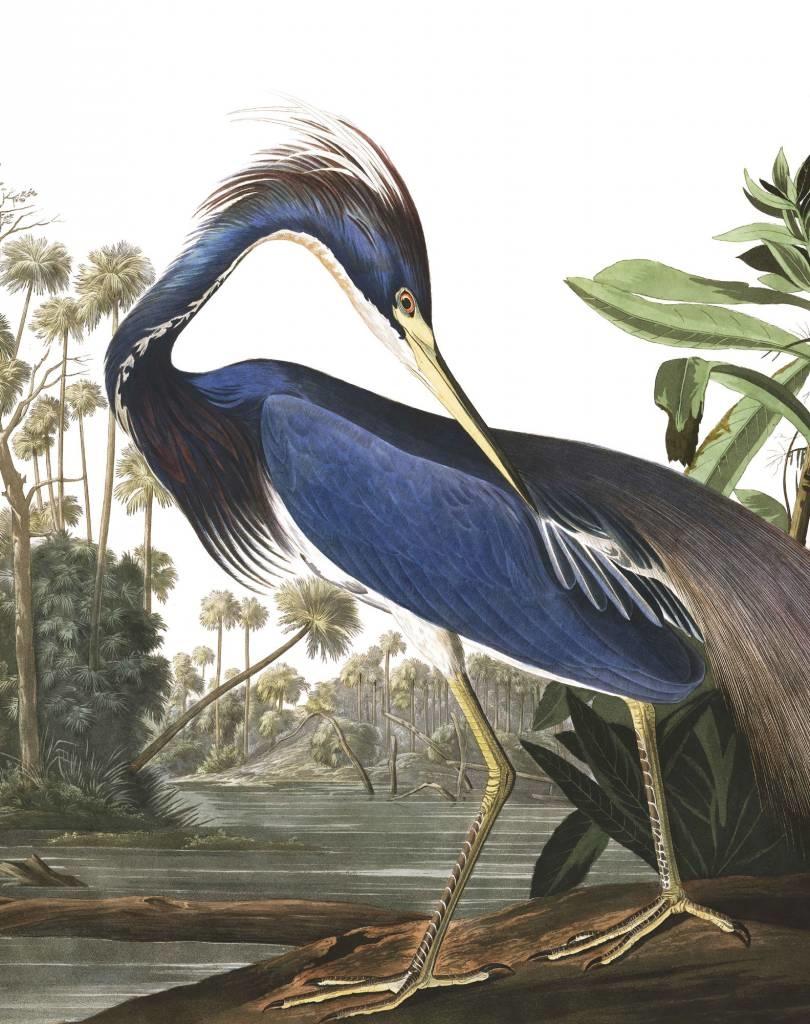 Behang Loisiana Heron 142,5x180cm-1