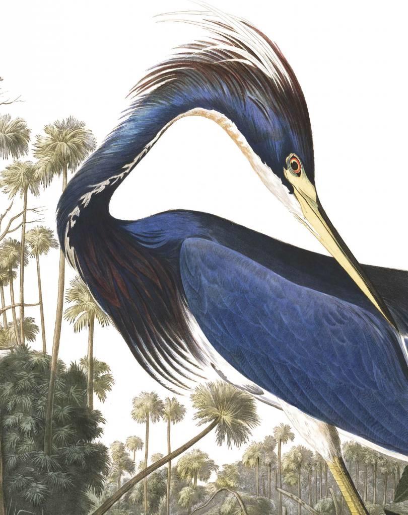 Behang Loisiana Heron 142,5x180cm-4