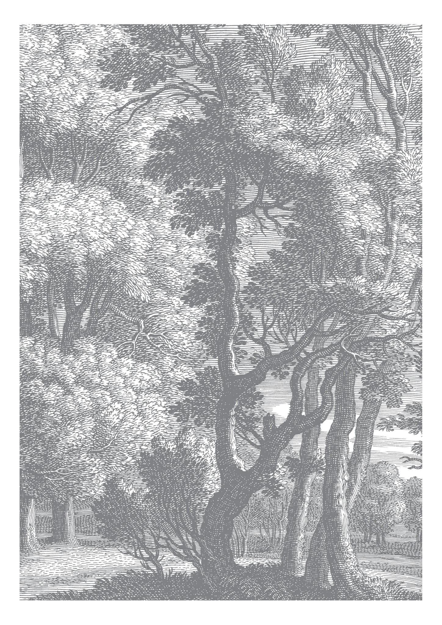 Behang Engraved Landscapes 194.8x280cm-1