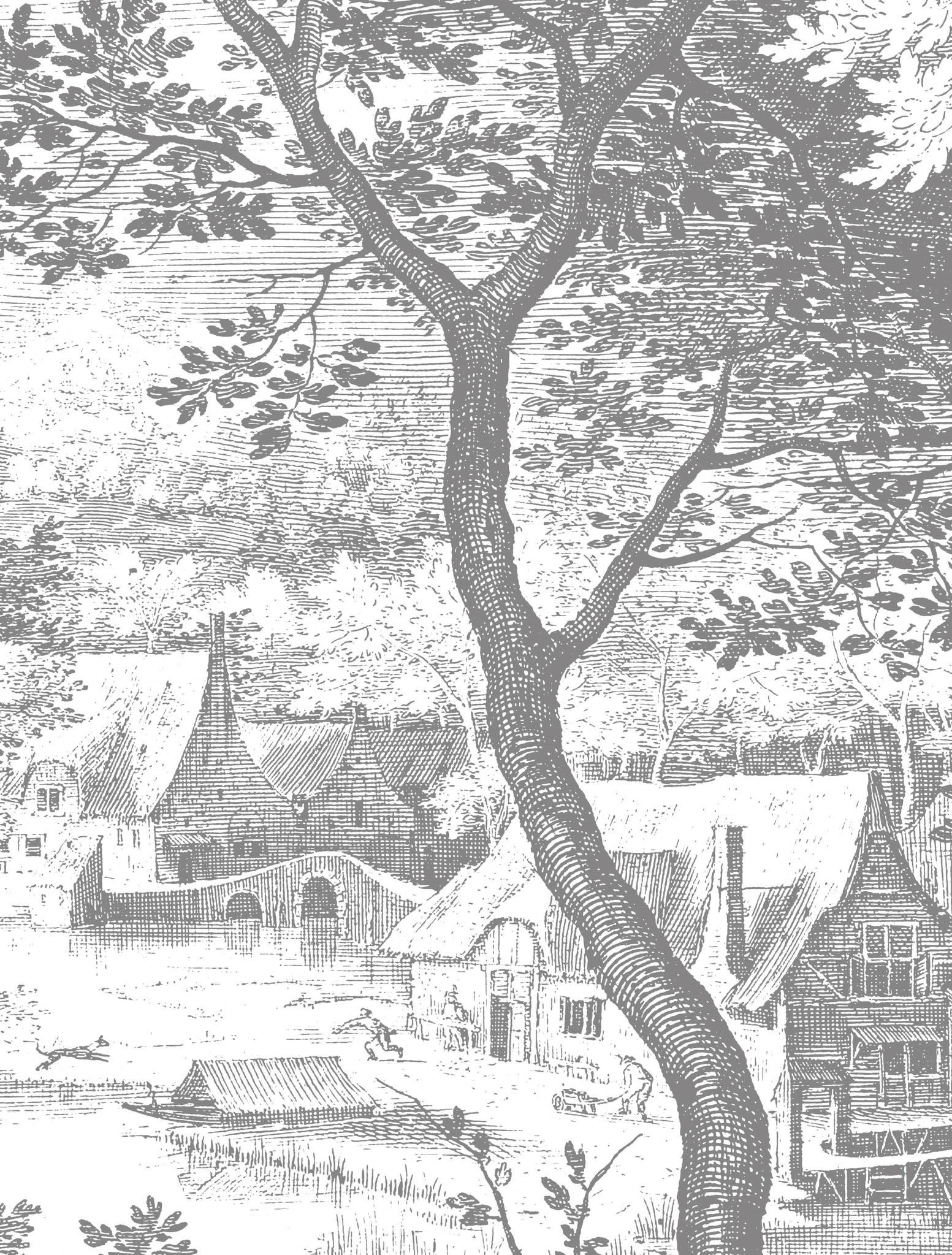 Fotobehang Engraved Landscapes 292.2x280cm-1