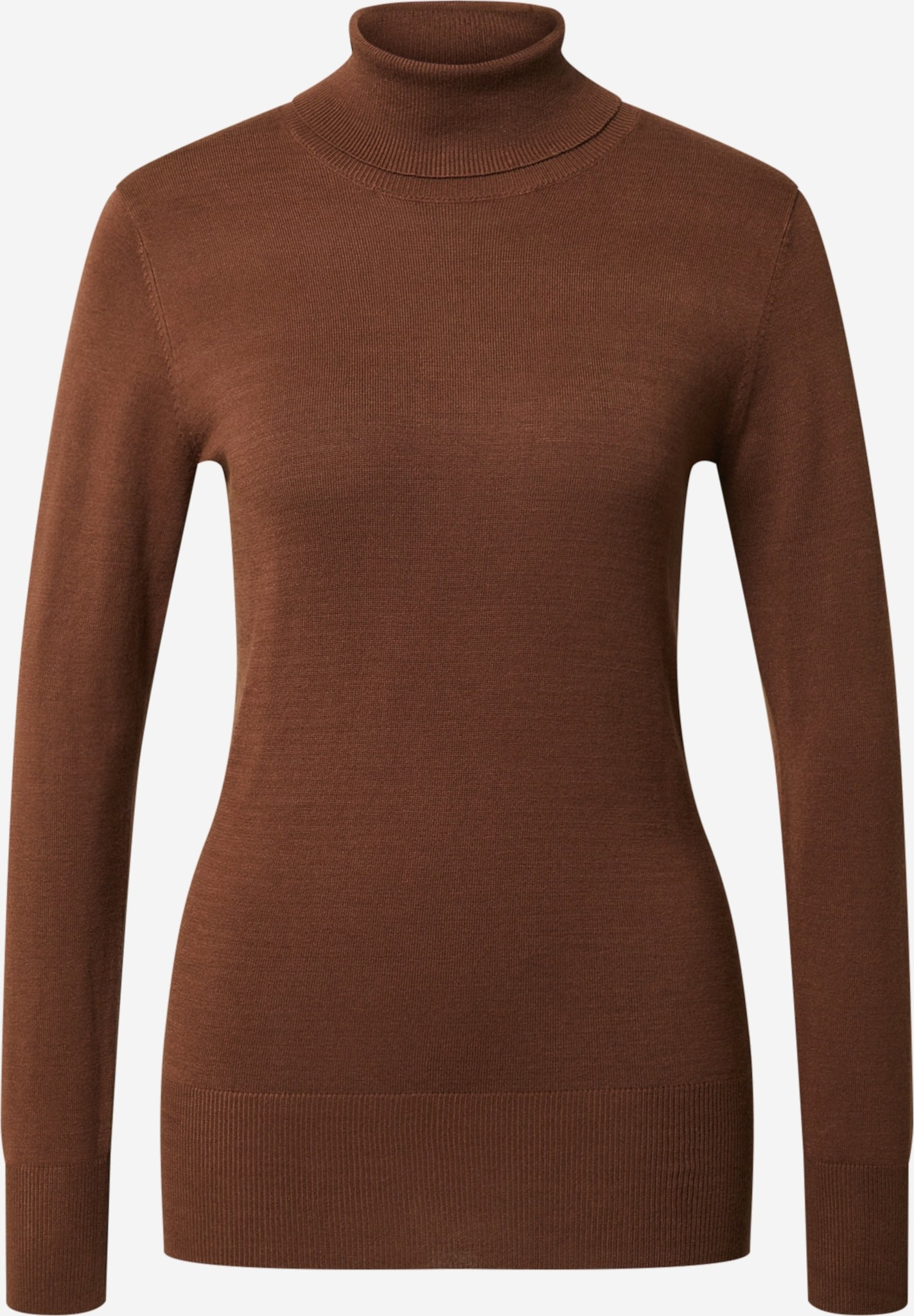 Trui Astrid roll neck mustang-1