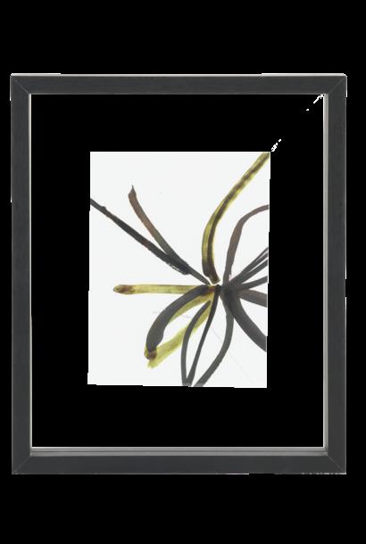 Fotolijst  floating frame Minimalism M black