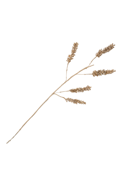 Tak Planta decorative cereal 5-blad