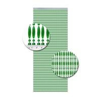Insektenschutzdirekt.de Perlenvorhang Grün Senkrecht