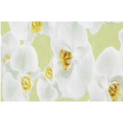 Klebefolie mit Orchidee Druck 45cmx2m
