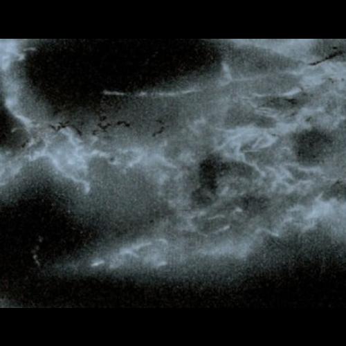 Klebefolie Marmor Schwarz 45cmx2m