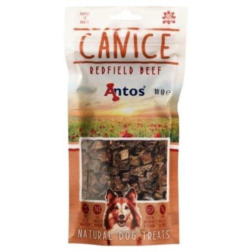 Antos Canice Rund 80 gr