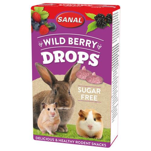 Sanal Wild Berry Drops Sugar Free 45 g