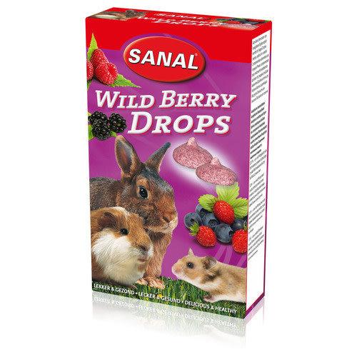 Sanal Wild Berry Drops 45 g