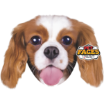 Pet Faces Pet Faces King Charles