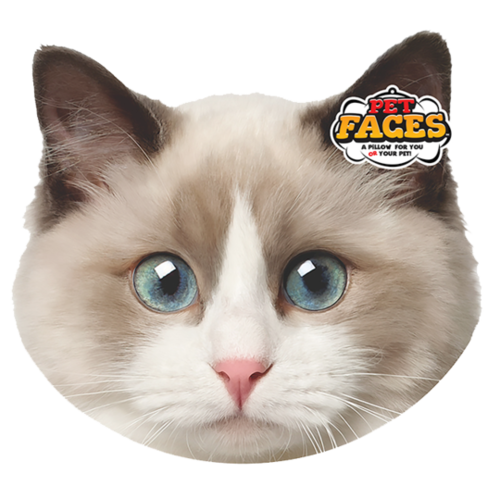 Pet Faces Pet Faces Lappenpop kat