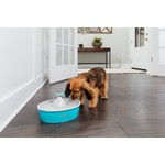 Drinkwell Drinkwell® Butterfly Pet Fountain