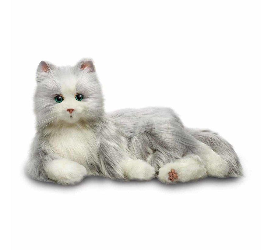Interactieve kat voor ouderen