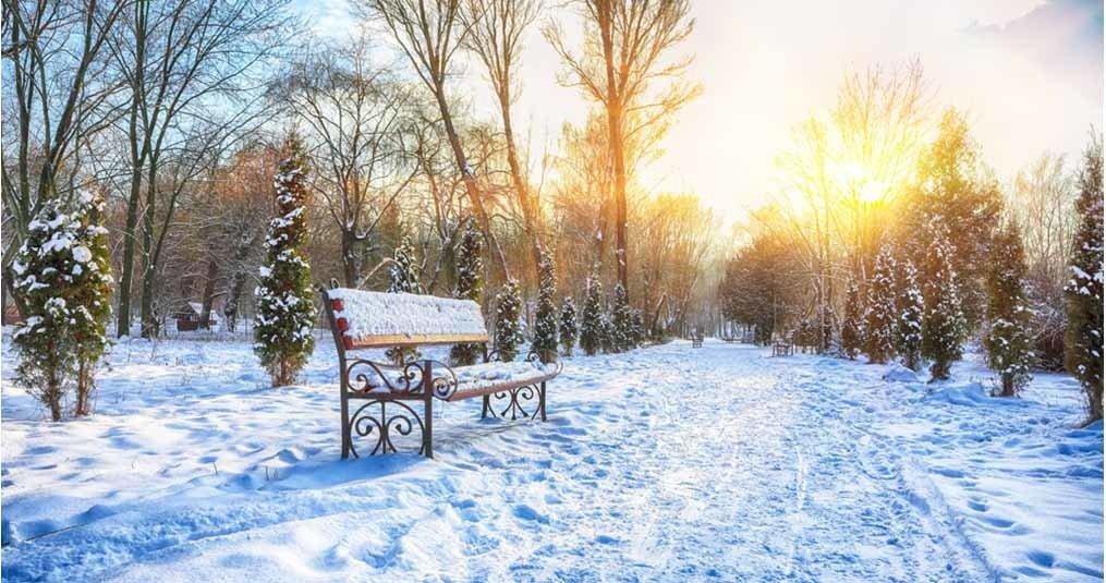 Rolstoel winter tips