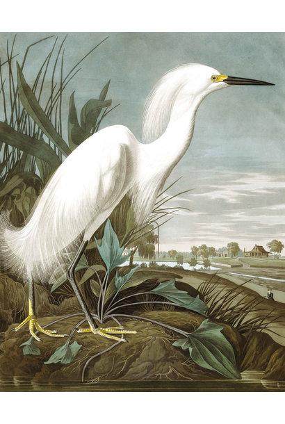Behangpaneel Snowy Heron