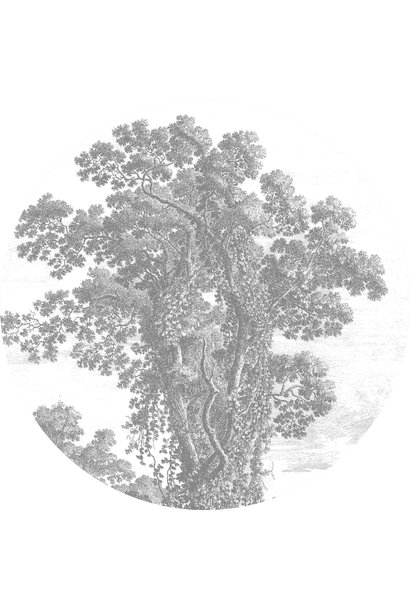 Behangcirkel Engraved Tree - Large
