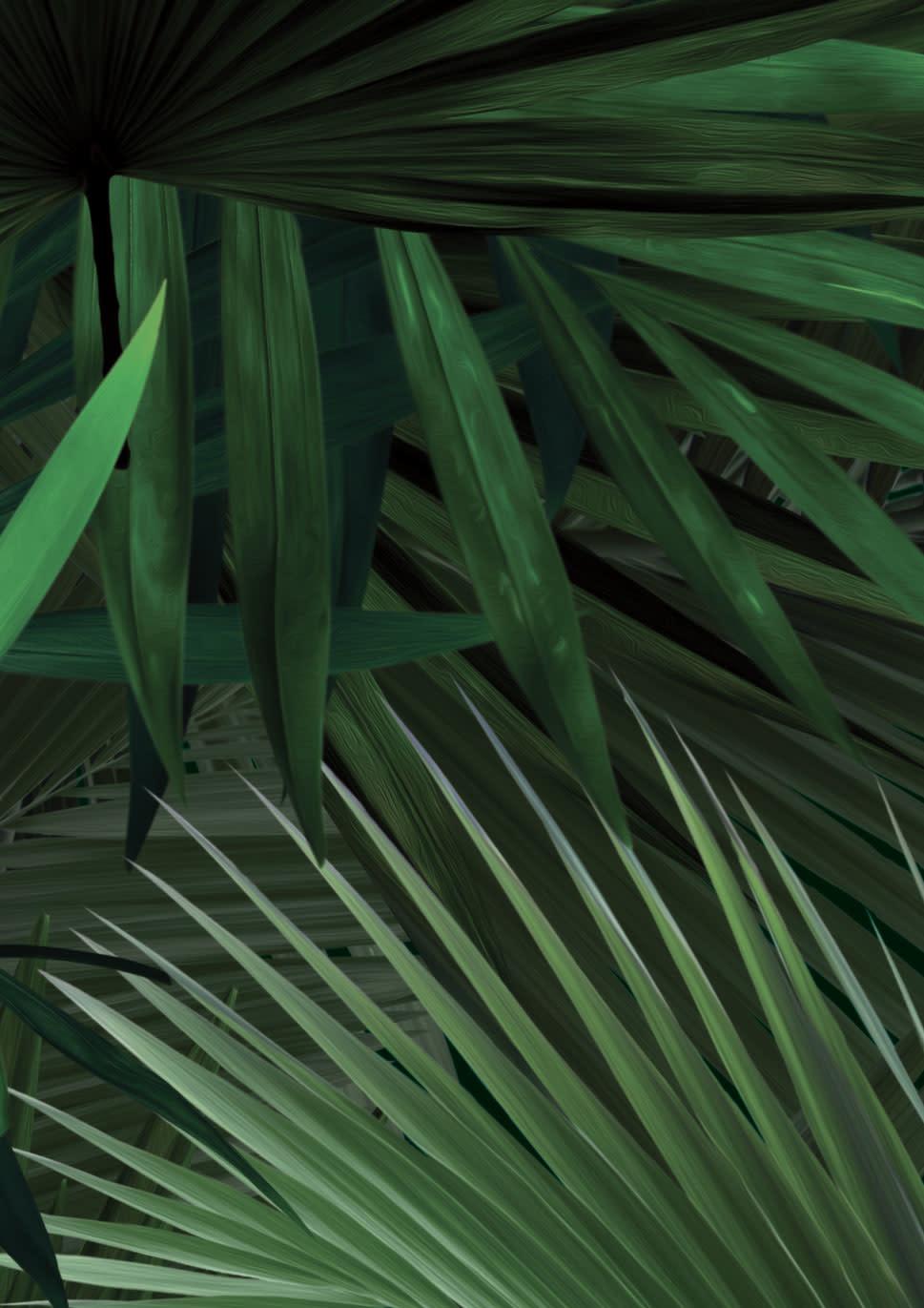 Behang Palm - 97.4 x 280-1