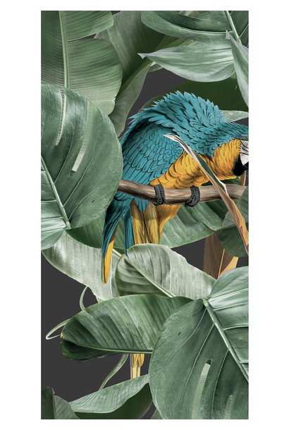 Behang Botanical Birds - 97.4 x 280