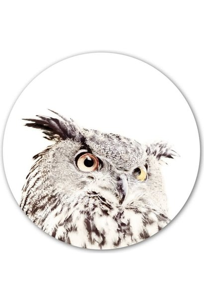 Magnetic sticker - owl