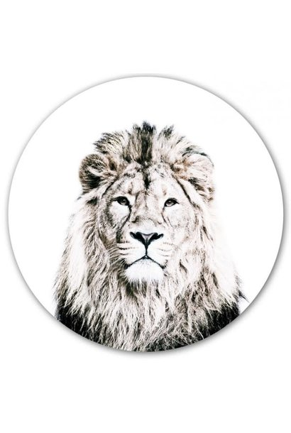 Magnetic sticker - lion