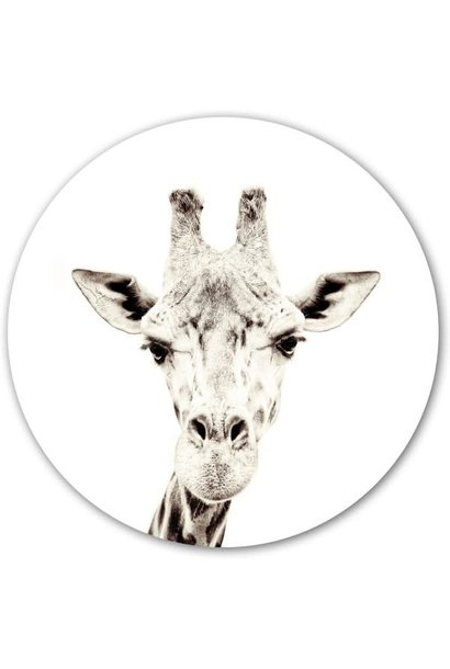 Magnetic sticker - giraffe