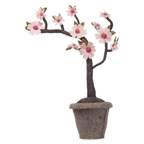 Kids Depot Blossom plant