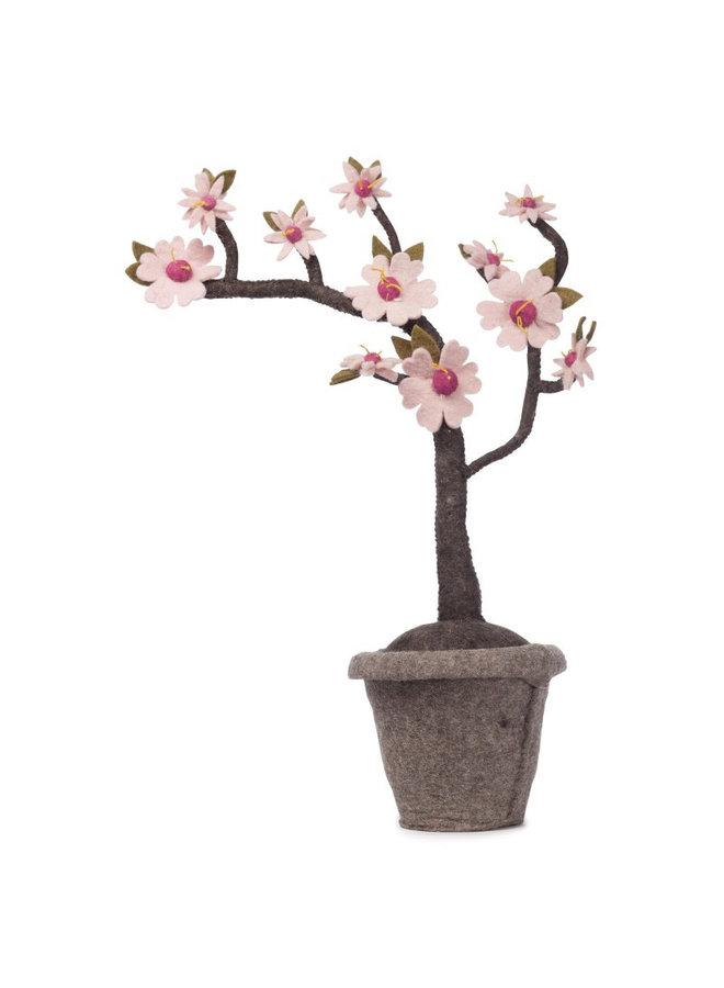 Kids Depot - Blossom plant