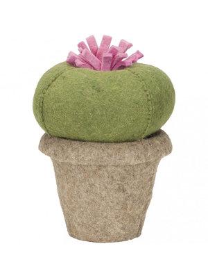 Kids Depot Cactus Queen