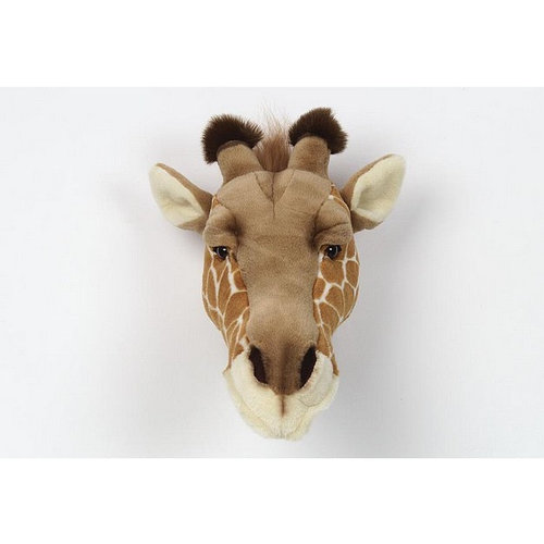 Wild & Soft Giraffe