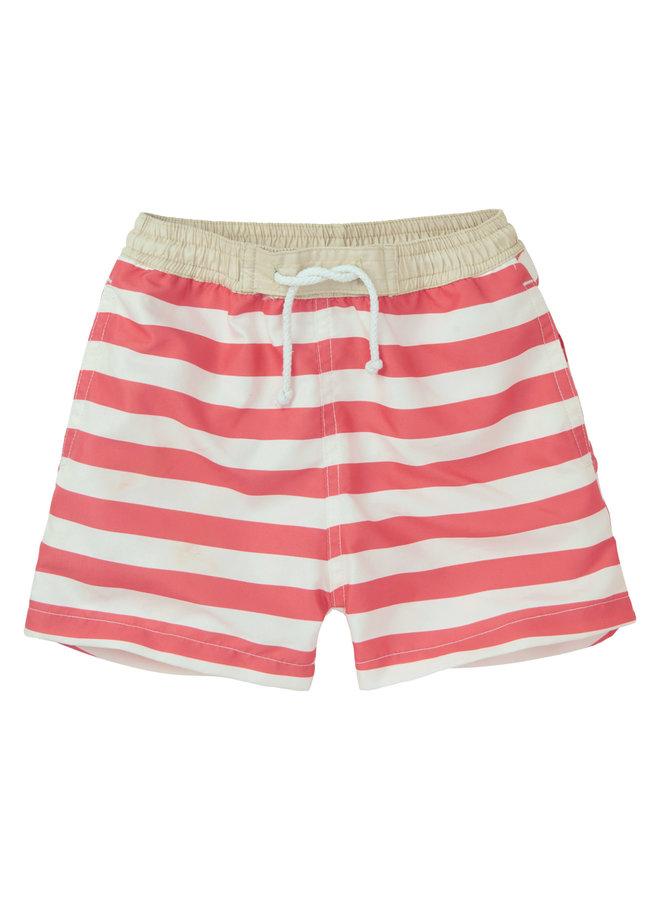 Swim Short 'Stripe'