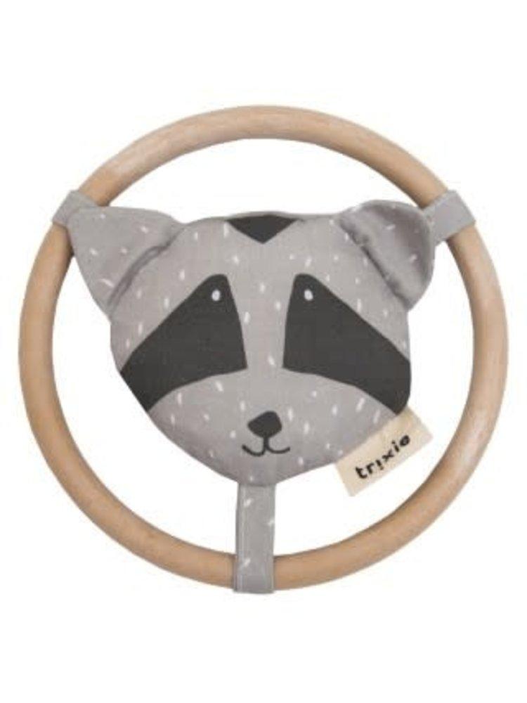 Trixie Rammelaar - Mr. Raccoon