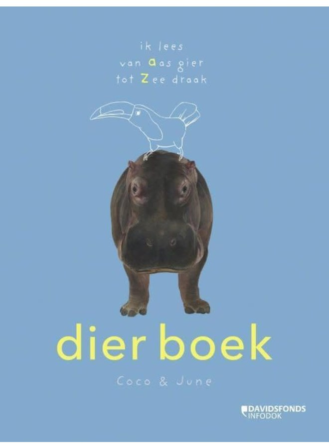 Coco & June - Dier boek