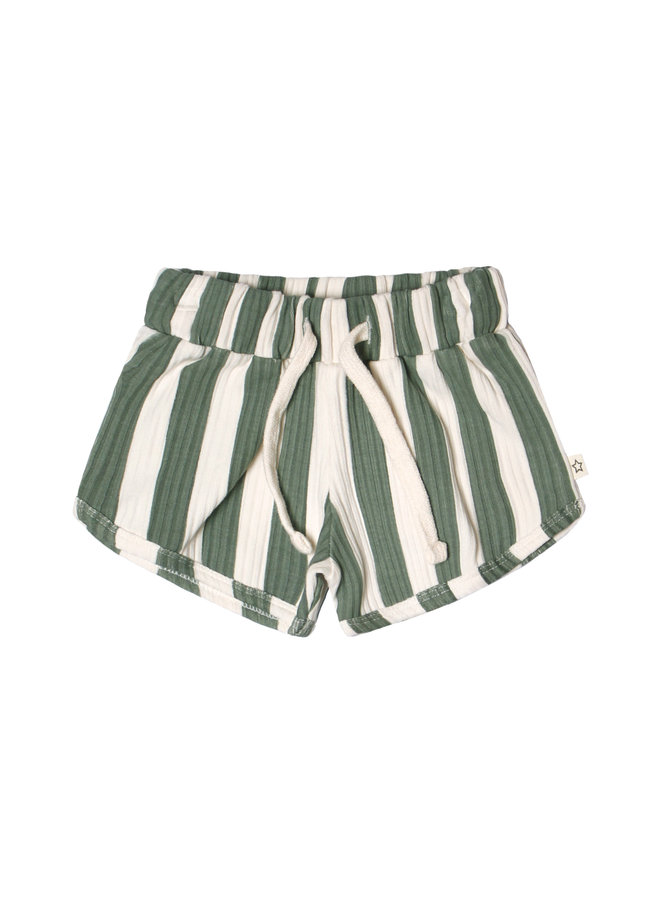Bold Stripes Shorts - 630 - Old Green