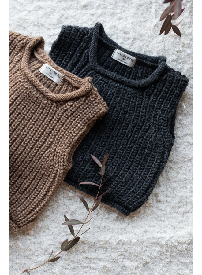 1+ in the family - One Color Knit - Gabriel - Brandy