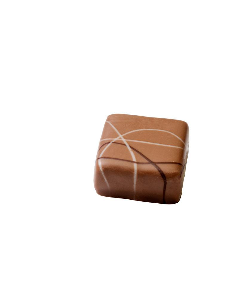 Visser Chocolade Bitterkoekjes