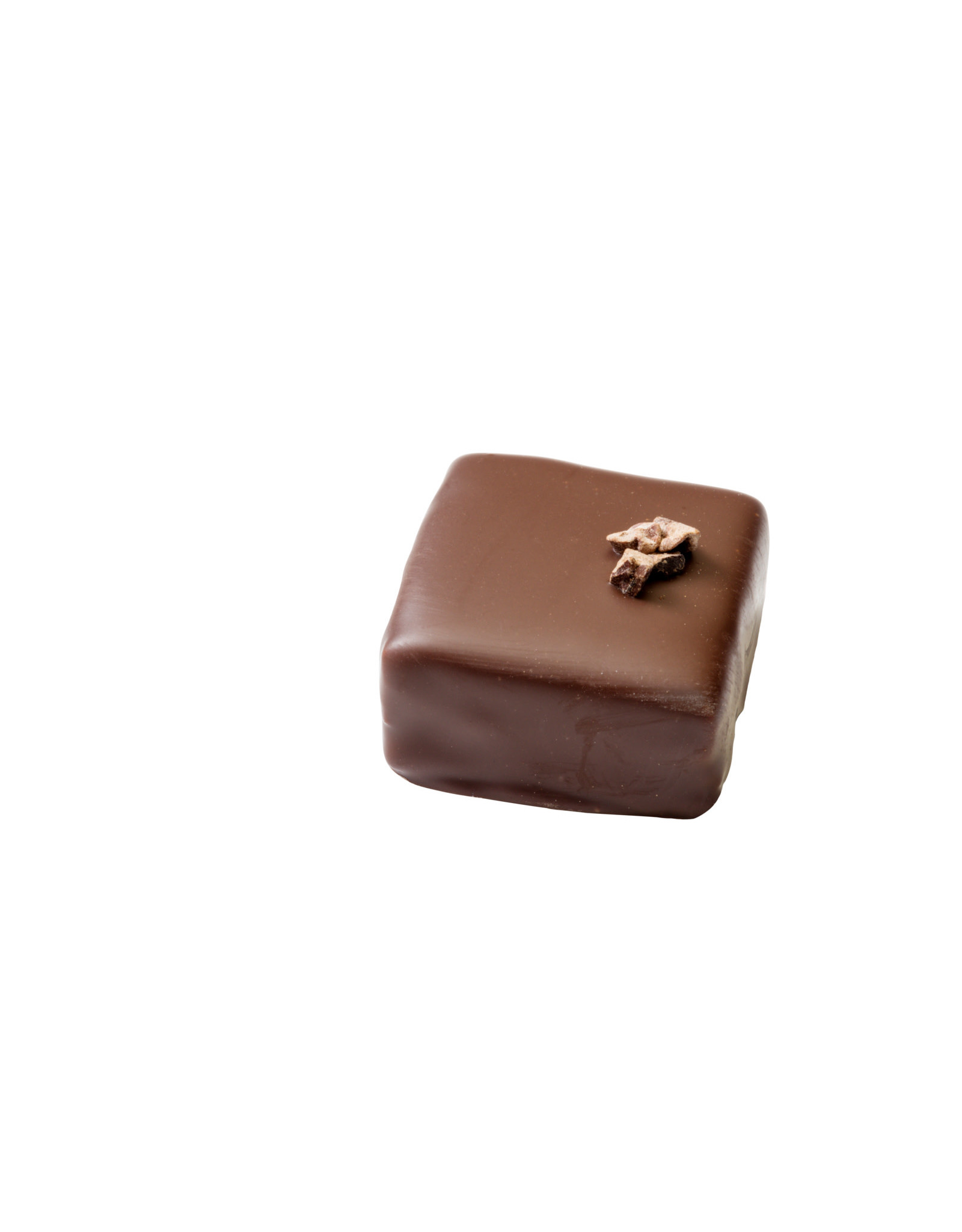 Visser Chocolade Cacaokern