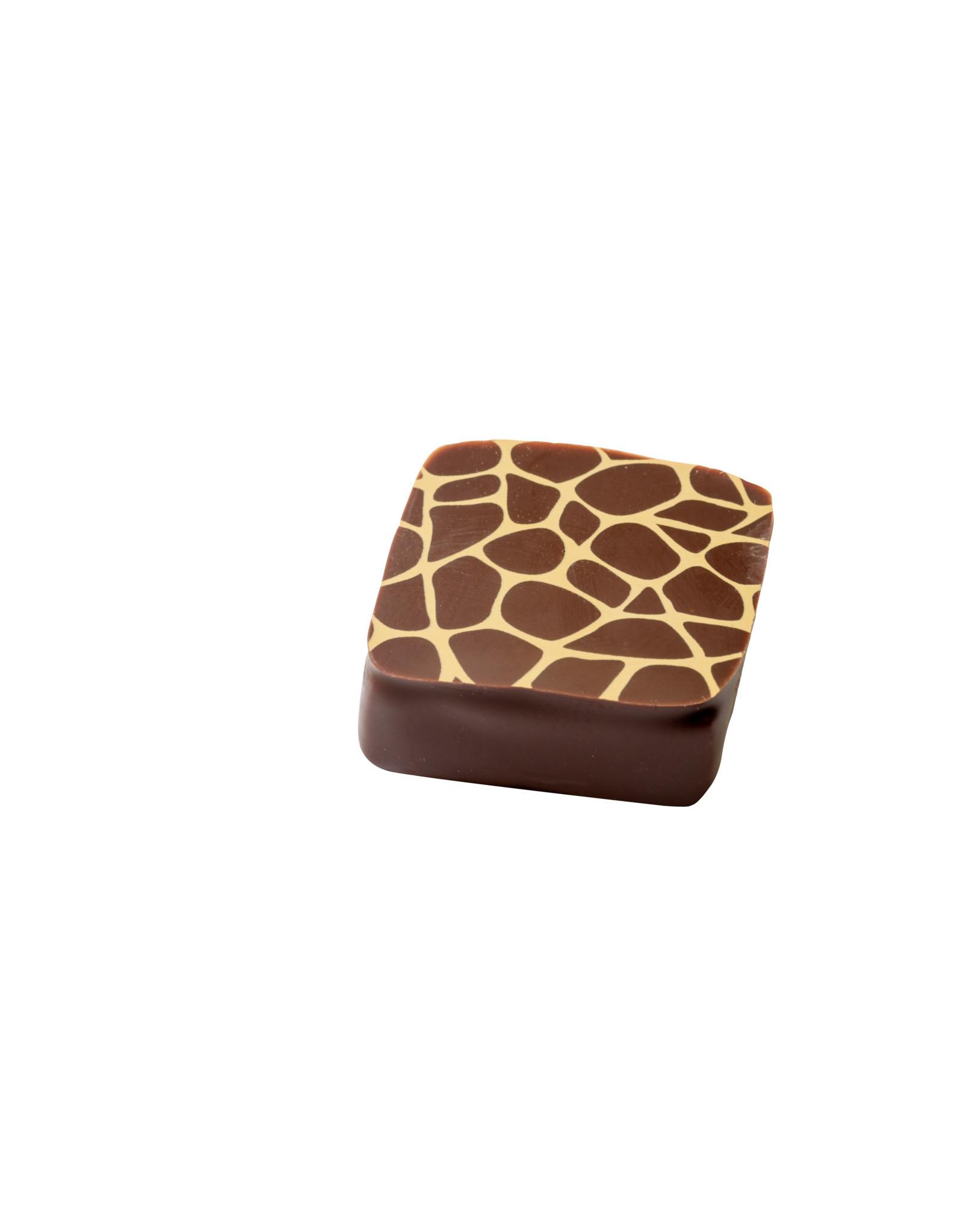 Visser Chocolade Espresso Kardamon