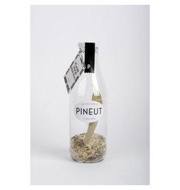 Pineut Pineut - Klaar voor een kus