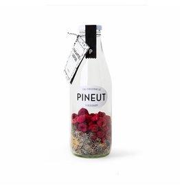 Pineut Pineut - Vakantie liefde
