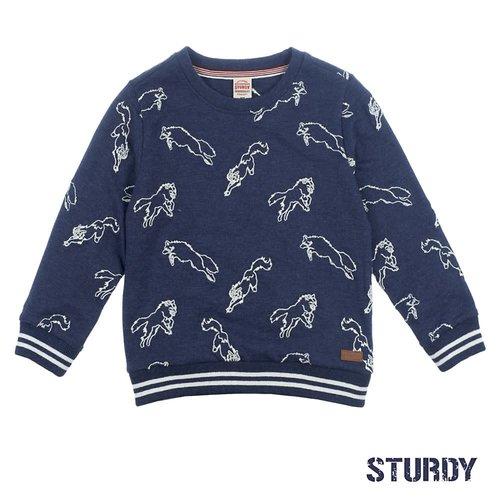 Sturdy Sweater AOP - Good Fellows