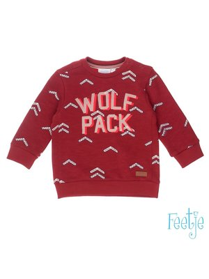 Feetje Sweater AOP/Wolf Pack - Good Fellows - Donker Rood