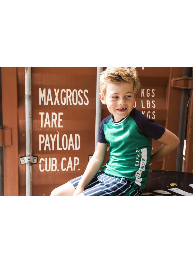 Boys shirt with contrast raglan sleeves - Jade green