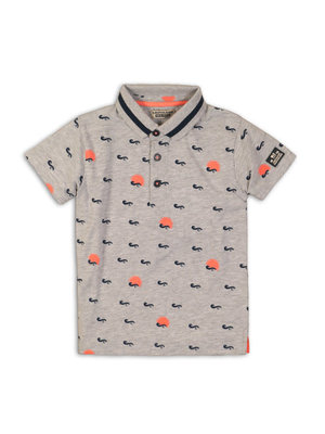 DJ Dutchjeans T-shirt grey melee + aop
