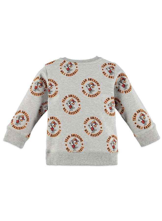 Boys Sweatshirt - Grey Melange