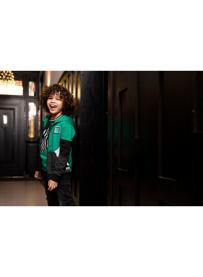 Boys - Sporty hoodie with colored panels - Jade Green